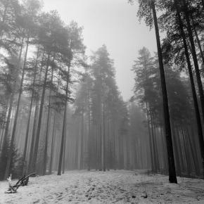 Пейзаж._12
