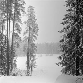 Пейзаж._7